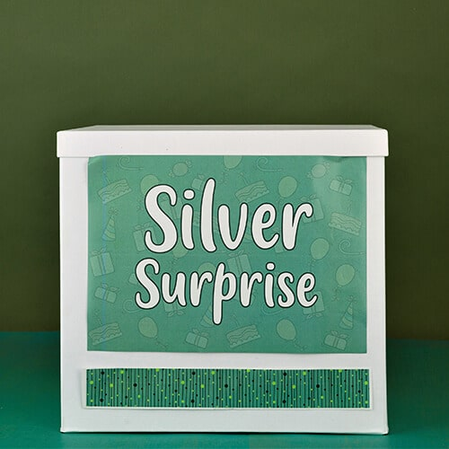 Silver Anniversary Surprise Delivery