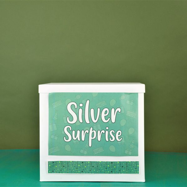 Silver-Birthday-surprise