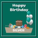 Silver Birthday Surprise