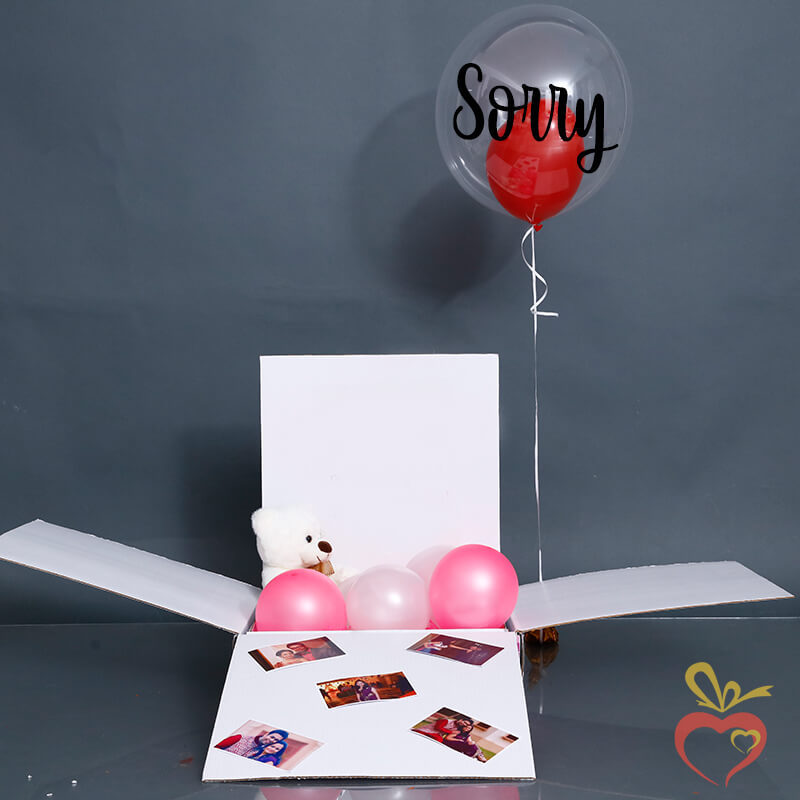 Sorry Surprise Gift
